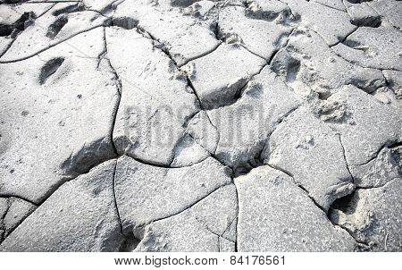 The footprints on the hard sand