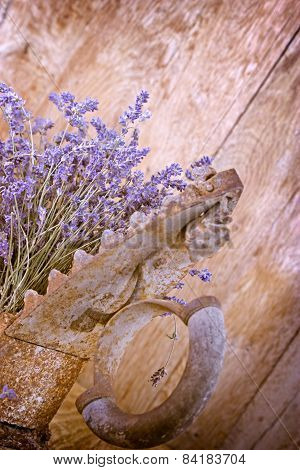 Dry lavender and rustic iron
