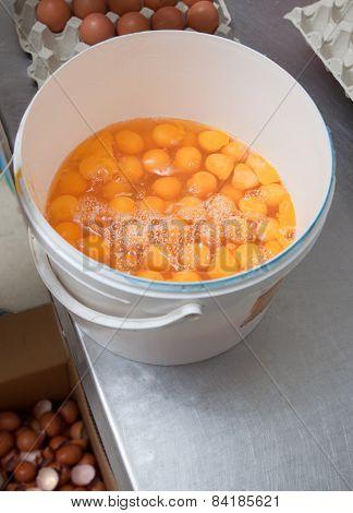 Eggs Bucket