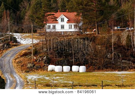 Norwegian Farm In Forest