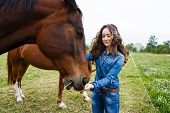 picture of feeding horse  - Young beautiful girl feeding a horse at summer time - JPG