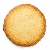 foto of biscuits  - Single traditional round butter biscuit - JPG