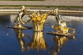 image of versaille  - Fountain in the castle of Versailles Ile de France France