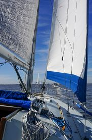 stock photo of sloop  - Sailboat with blue trimmed jib out sailing with other boats in the Icicle Races on Galveston Bay Texas  - JPG