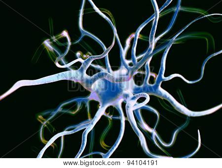 Neuron or nerve cells