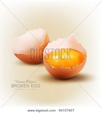 vector object - a broken egg with the yolk.