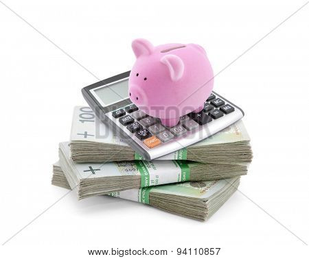 Piggy bank with polish money and calculator