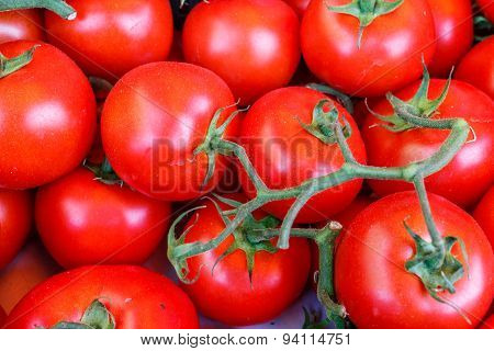Raw Tomatoes Group From Marketplace