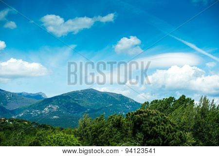 Pyrenees Meadow in sunny summer day