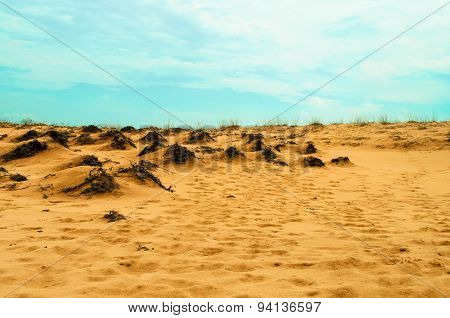 Desert With Orange Sand And Blue Sky Landscape