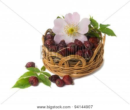 Dried Berries And Flowers Of Wild Rose Isolated On White Background