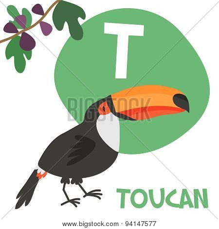 Funny cartoon animals vector alphabet letter set for kids. T is Toucan