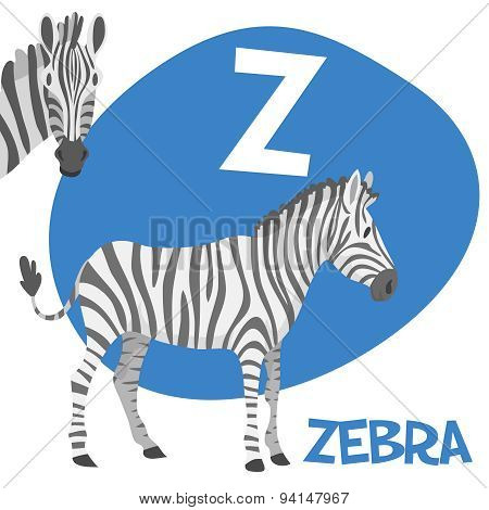 Funny cartoon animals vector alphabet letter set for kids. Z is zebra
