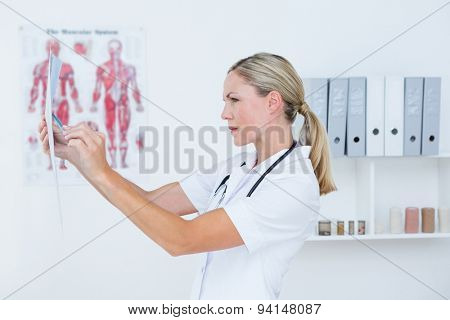 Concentrate doctor looking at X Rays in medical office