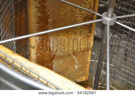 Honeycomb Frames Into Centrifuge