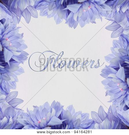 flower decoration floral frame on white background