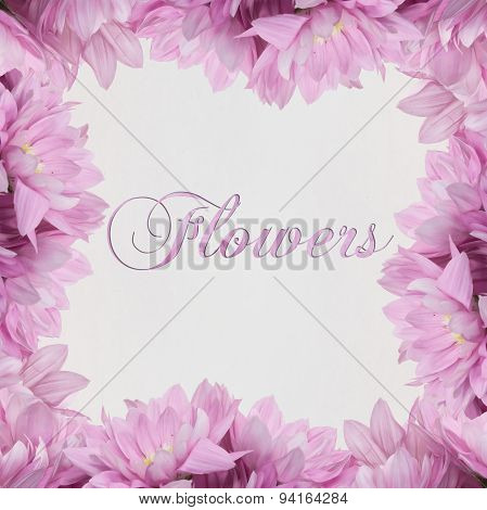 flower decoration floral frame on white background
