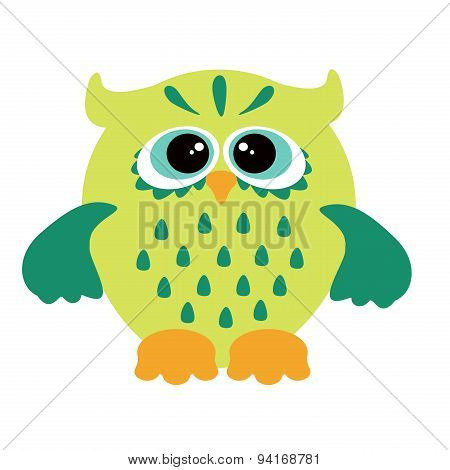 Owl on white background.