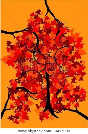 Blätter Herbst Baum mit Farbe