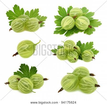 Set Ripe Green Gooseberries With Leaves (isolated)