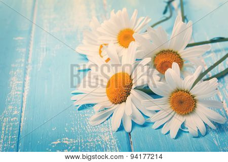 Daisies On Blue Wooden Table. Toned Photo