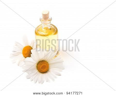 Bottle Of Aroma Oil And Chamomiles Isolated On White Background