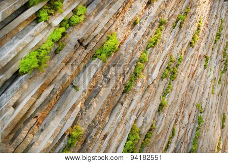 Wall of limestone slabs laid diagonally with bunches of bright green sheaf of moss