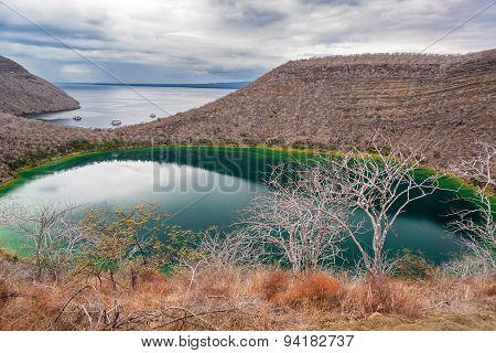 Brackish Lagoon In Galapagos