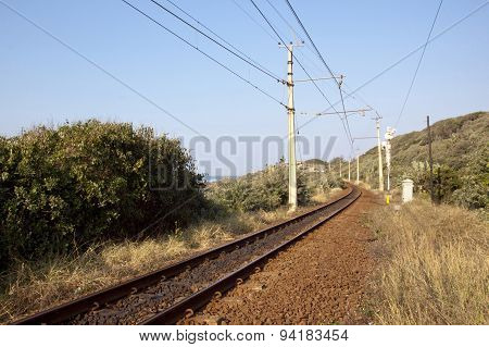 Railway Line Running Between Vegetation Alongside Indian Ocean