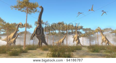 Brachiosaurus Browsing