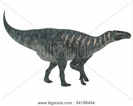 Iguanodon Side Profile