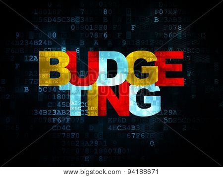 Finance concept: Budgeting on Digital background