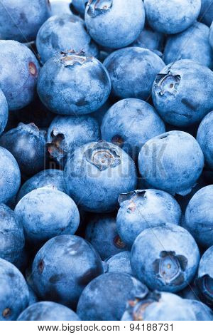 Bunch Of Blueberries - Close Up Studio Shot