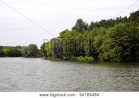 Landscape With Forest And Summer Lake