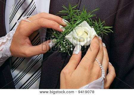 Hands Fiancee On The Buttonhole Of Groom