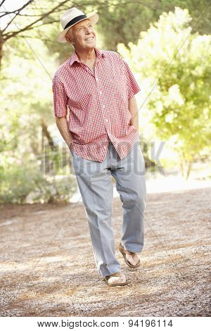 Senior Man Walking In Countryside