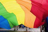picture of transvestites  - Big rainbow flag - JPG