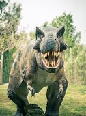 foto of carnivorous plants  - ancient extinct dinosaur tyrannosaurus on a background of plants - JPG