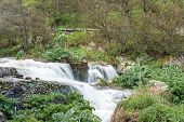 stock photo of waterfalls  - waterfall in the mountains waterfall in the mountains - JPG
