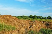 pic of feces  - Steaming pile of manure on farm field  - JPG