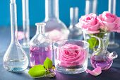 stock photo of flask  - alchemy and aromatherapy set with rose flowers and chemical flasks - JPG