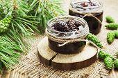 pic of pine cone  - Jam of green pine cones in glass jar - JPG