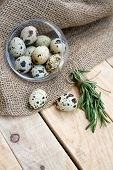 picture of quail  - Quail eggs a bunch of rosemary and burlap are on the unpainted wooden background - JPG