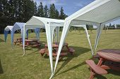 foto of gazebo  - Picnic tables and tent gazebos on an outdoor lawn Canby Oregon - JPG