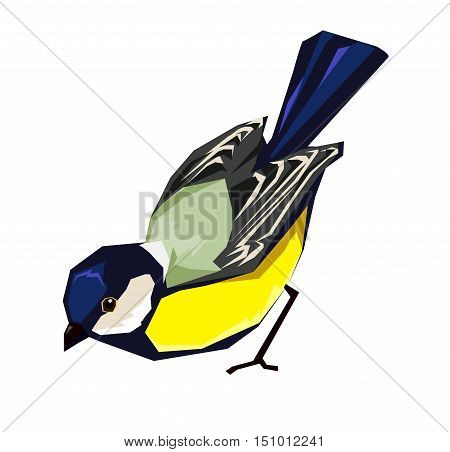 Great tit vector illustration, bird vector. Great tit bird