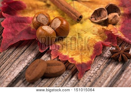Autumn leaf with filberts and cookies over old wooden background