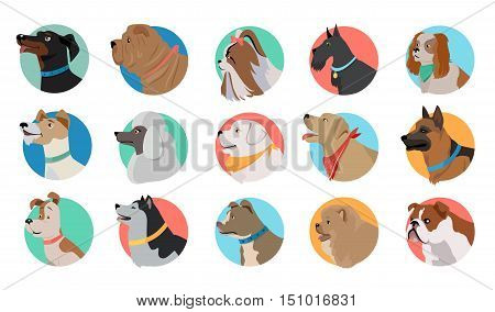 Set of dog round icons. Dog breed set. Different type of dogs. Icon collection for dog club, pet clinic and pet shop. Dog avatar. Isolated vector illustration on white background.