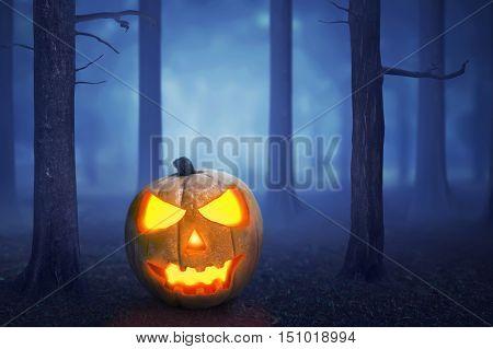 Halloween Pumpkin In A Mystical Forest