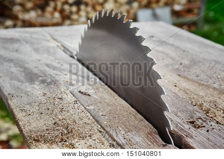 Detail view on a circular saw blade.