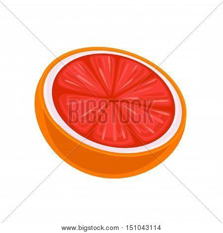 Juicy Grapefruit. Vector isolated on white background.